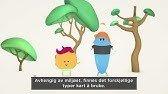 opplæring-video-1.jpg